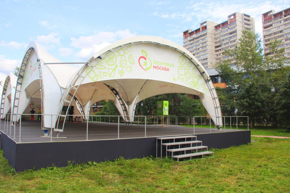 Оформление 13 Веранд Здоровья в рамках городского проекта Здоровая Москва